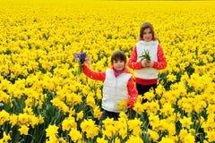Lyckliga ungar med våren blommar på gula påskliljor fältet, barn på semester i Nederländerna Royaltyfri Fotografi