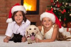 Lyckliga ungar och deras husdjur som firar jul Arkivfoto