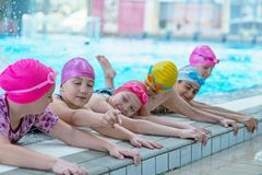 Lyckliga ungar på simbassängen Unga och lyckade simmare poserar royaltyfri fotografi