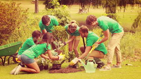 Lyckliga vänner som arbeta i trädgården för gemenskapen arkivfilmer