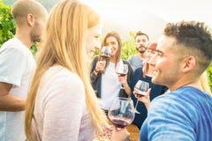 Lyckliga vänner som har roligt och dricker vin på det trädgårds- partiet för vingård Arkivfoto