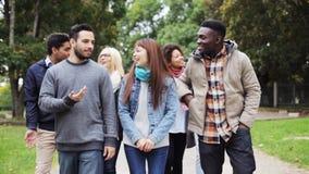 Lyckliga vänner som promenerar höst, parkerar stock video