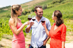 Lyckliga vänner som rostar exponeringsglas av vin Royaltyfria Foton