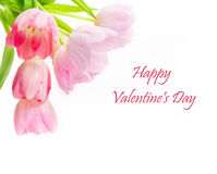 Lyckliga valentin dag hälsningkort Fotografering för Bildbyråer