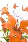 lyckliga valentiner för dag Royaltyfri Fotografi