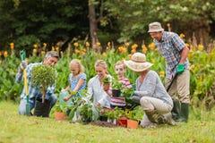 Lyckligt arbeta i trädgården för familj Fotografering för Bildbyråer