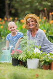 Lyckligt arbeta i trädgården för farmor och för farfar Royaltyfri Bild