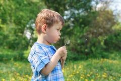 Lyckligt barn som utomhus blåser maskrosen i medeltal Utomhus- sommar royaltyfri bild