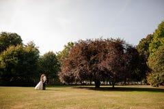Lyckligt gift paranseende på ett fält för grönt gräs med ett stort träd royaltyfria bilder