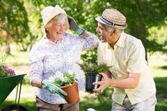 Lyckligt högt arbeta i trädgården för par Arkivbilder
