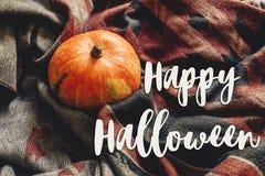 Lyckligt halloween texttecken på höstpumpa på den fab stilfulla halsduken Royaltyfria Bilder