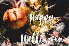 Lyckligt halloween texttecken på höstpumpa med färgrika sidor Royaltyfri Bild