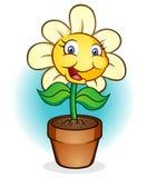 lyckligt inlagt för blomma Arkivfoto