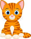 Lyckligt kattsammanträde för tecknad film royaltyfri illustrationer