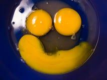Lyckligt le ägg Arkivbild