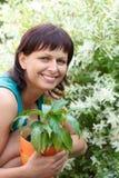 Lyckligt le mellersta arbeta i trädgården för ålderkvinna Arkivfoto