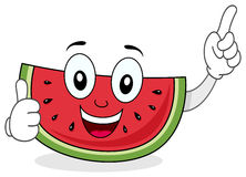 Lyckligt le vattenmelontecken Royaltyfri Fotografi