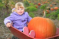 Lyckligt litet barn som in skrattar den gulliga litet barnflickan Fotografering för Bildbyråer