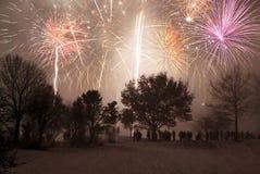 lyckligt nytt år Arkivbild