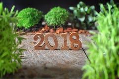 Lyckligt nytt år 2018 Fotografering för Bildbyråer