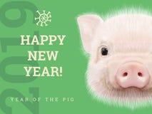 Lyckligt nytt år 2019 år av det pappers- kortet för svin Kinesiska år symbol, zodiaktecken för hälsningskortet, reklamblad och stock illustrationer