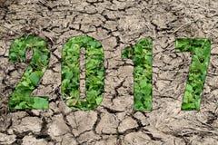 Lyckligt nytt år 2017 i tema för torr jord och växt Arkivfoto