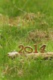 Lyckligt nytt år 2014 på gräs i trädgården Arkivbilder