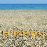 Lyckligt på stranden, med en filtereffekt Fotografering för Bildbyråer