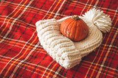 Lyckligt tacksägelsebegrepp Härlig pumpa, hatt, på den röda plädet ferie för hälsningar för julsammansättning smyckar kall grön s arkivbilder