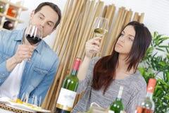 Lyckligt vin för paravsmakninggoda royaltyfri bild