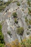 Lycksökare som klättrar på stort, vaggar i en nationalpark arkivfoton
