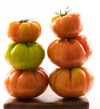 Lycopersicum tomatoes - composition Stock Photos