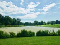 Landscape of the lake royalty free stock image