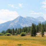 Lyell Canyon Tuolumne Meadows stock image