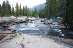 Lyell Fork in Yosemite National Park Royalty Free Stock Photography