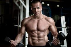 Lyftande vikt för ung vuxen kroppsbyggare i idrottshall Arkivfoto