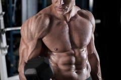 Lyftande vikt för ung vuxen kroppsbyggare i idrottshall Royaltyfri Foto
