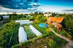 Lyftta sängar i grönsakträdgård Royaltyfria Foton