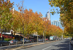 Lygon gata i höst, Melbourne Australien royaltyfri fotografi