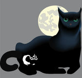 Lying black cat against the moon, the inscription and symbols Royalty Free Stock Images
