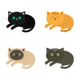 Lying cat icon set. Siamese, red, black, orange, gray color cats in flat design style. royalty free illustration