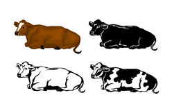 Lying Cow Cattle set Stock Image