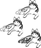 Lying dog with puppies. Vector drawing lying dog with puppies Royalty Free Stock Photography