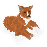 Lying dog. Vector illustration without gradients Royalty Free Stock Image