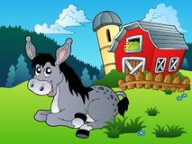 Lying donkey near farm Royalty Free Stock Photo