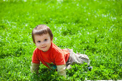 Lying in grass Royalty Free Stock Photography
