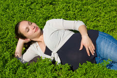Lying in grass stock photos