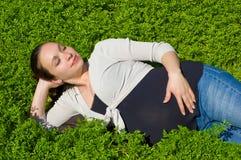 Lying in grass Stock Photos