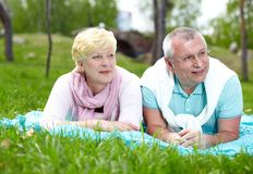 Lying on grass Stock Images