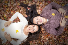 Lying on the Leaves Stock Photos